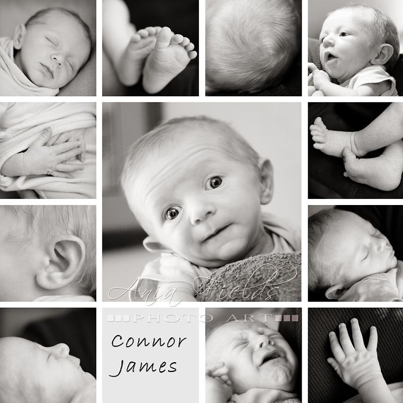 baby-photographer-madison-wi