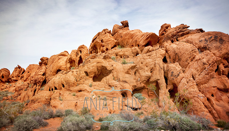 Valley-of-Fire-State-Park_02-red-rocks