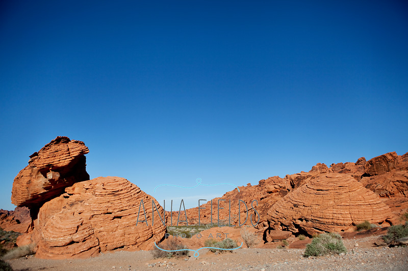 Valley-of-Fire-State-Park_16-bee-hives