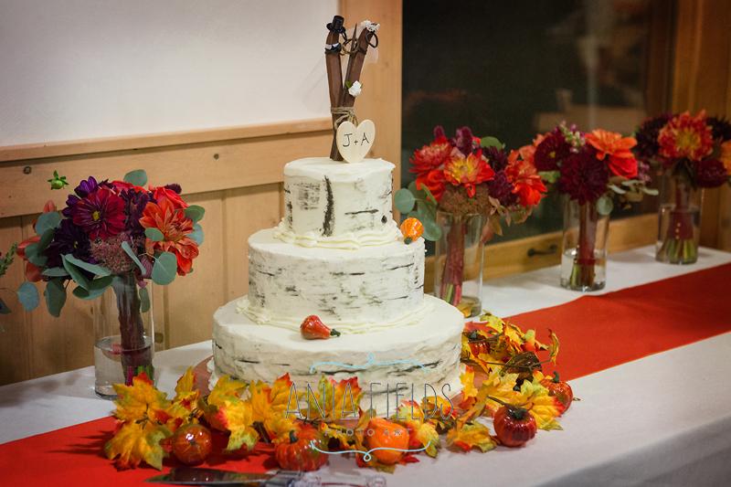 cross country skis wedding cake