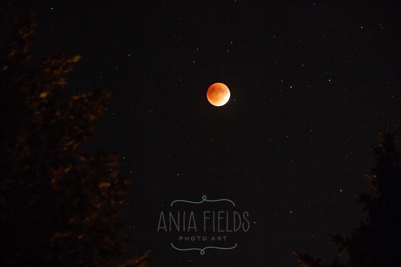 blood moon eclipse magic - photo #35