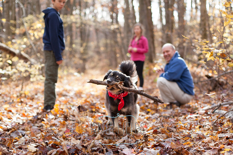 hikes-with-dog-in-Wisconsin_34