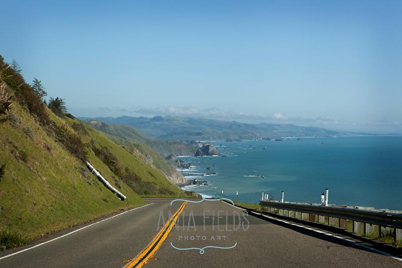 California 1 Pacific Highway