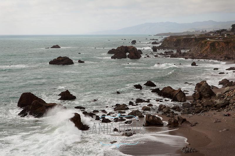 visiting-Northern-California_08