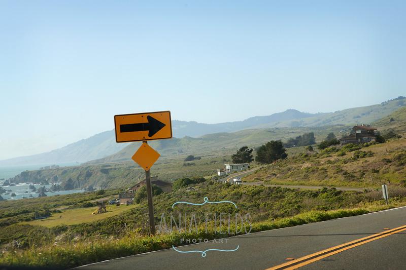 driving California Hwy 1