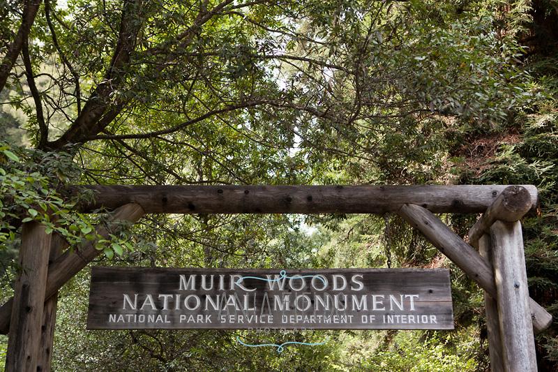 visiting-Northern-California_43