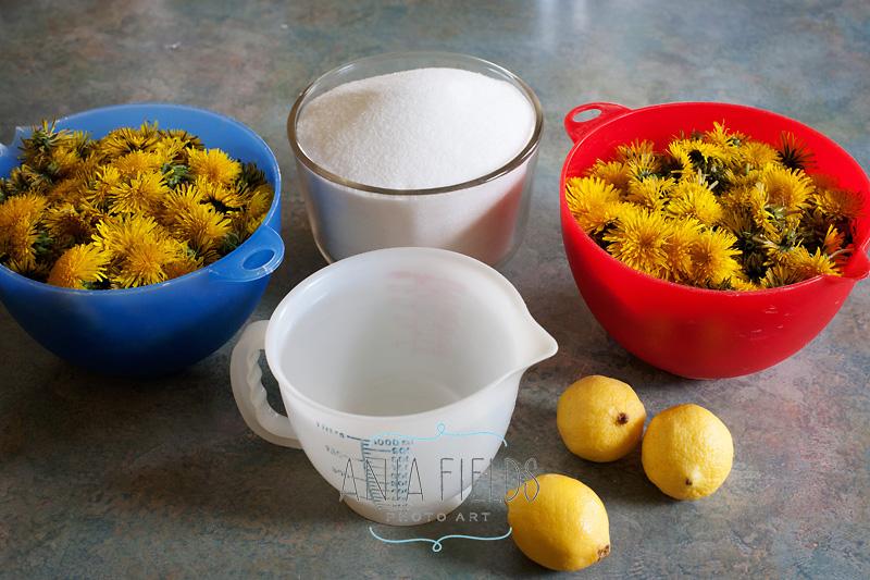 dandelion honey ingredients