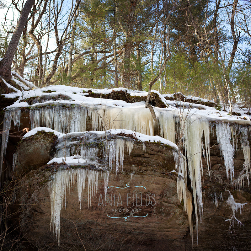 Wisconsin Winter Hikes