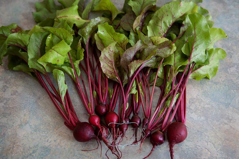 botwinka-recipe-polish-beet-greens-soup