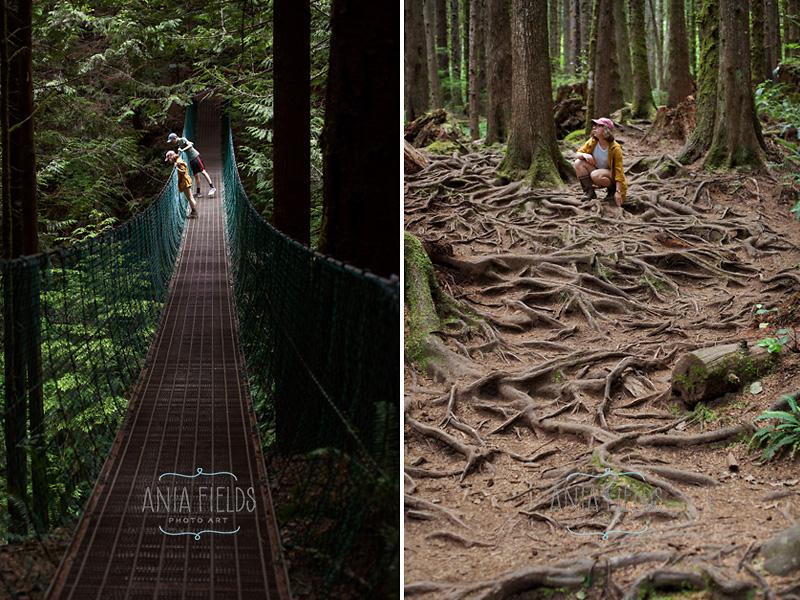 suspension bridge Vancouver Island