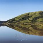 Nicasio reservoir in spring